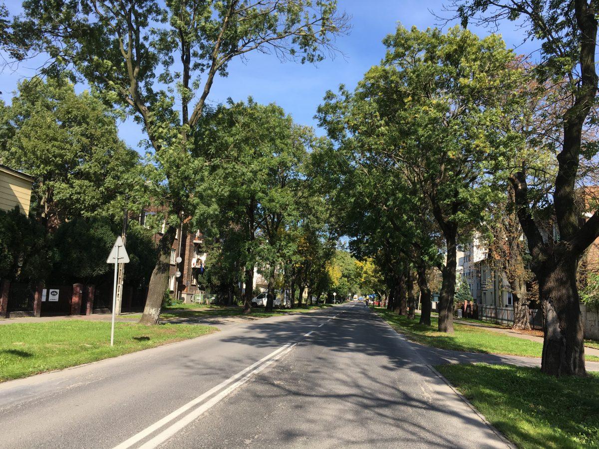 Ulica Potrzebna główną drogą dojazdu do Stacji Muzeum?