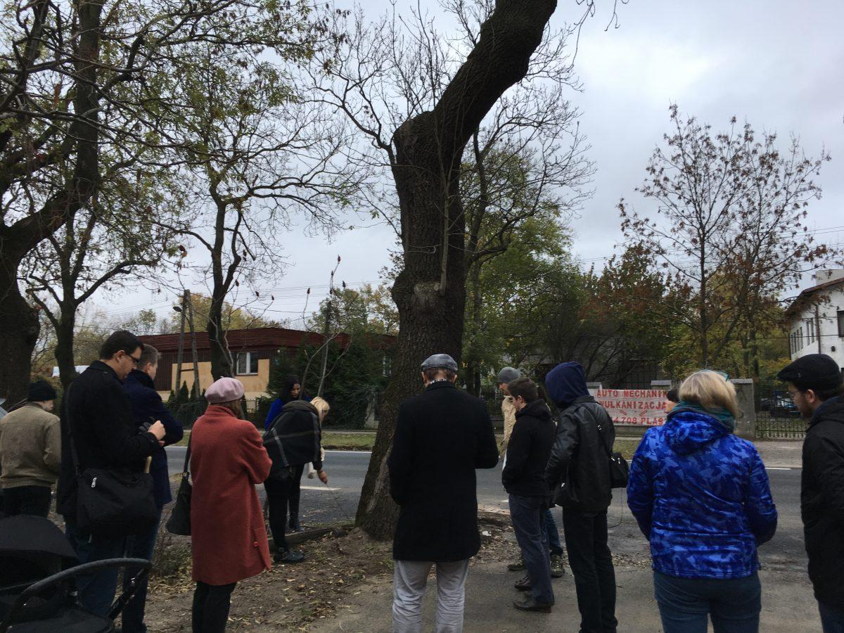Wycinka drzew na ul. Potrzebnej. Spotkanie z Zarządem Zieleni
